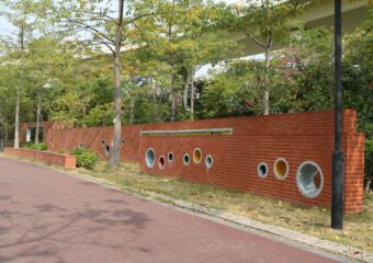 Different artistic effects of Clay brick tiles