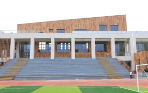 Holzmaserung Fliese für Qingdao Yucai Junior High School